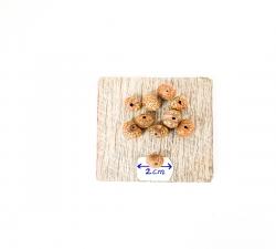 graines : palmier açaï tigré X100 diamètre 8mm
