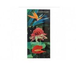 Magnet XL Fleurs