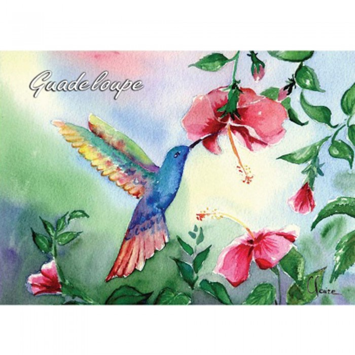 Magnet peinture Claire colibris