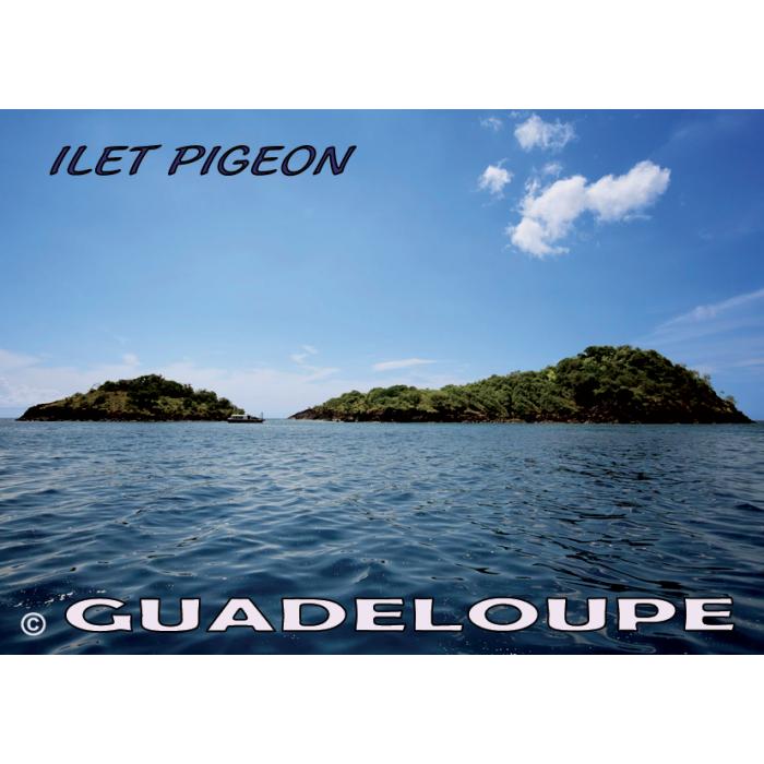 Magnet Photo - Ilet Pigeon